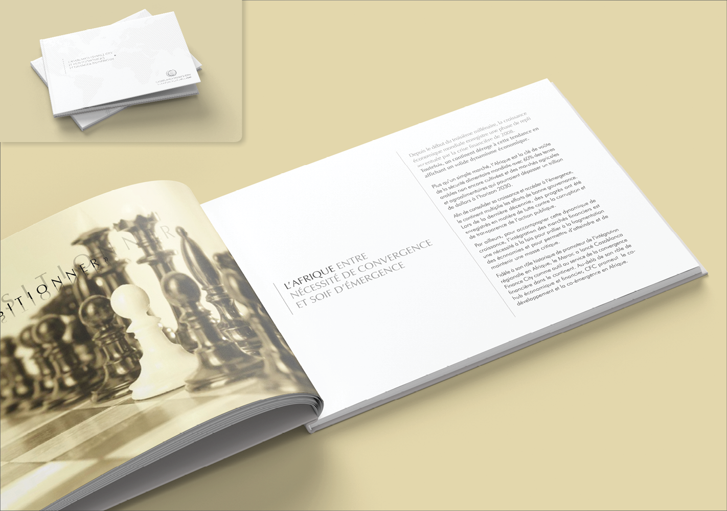 #Brochure institutionnelle : Adaptation, exécution et impression #Institutional brochure : Adaptation, execution and printing #Corporate #Print